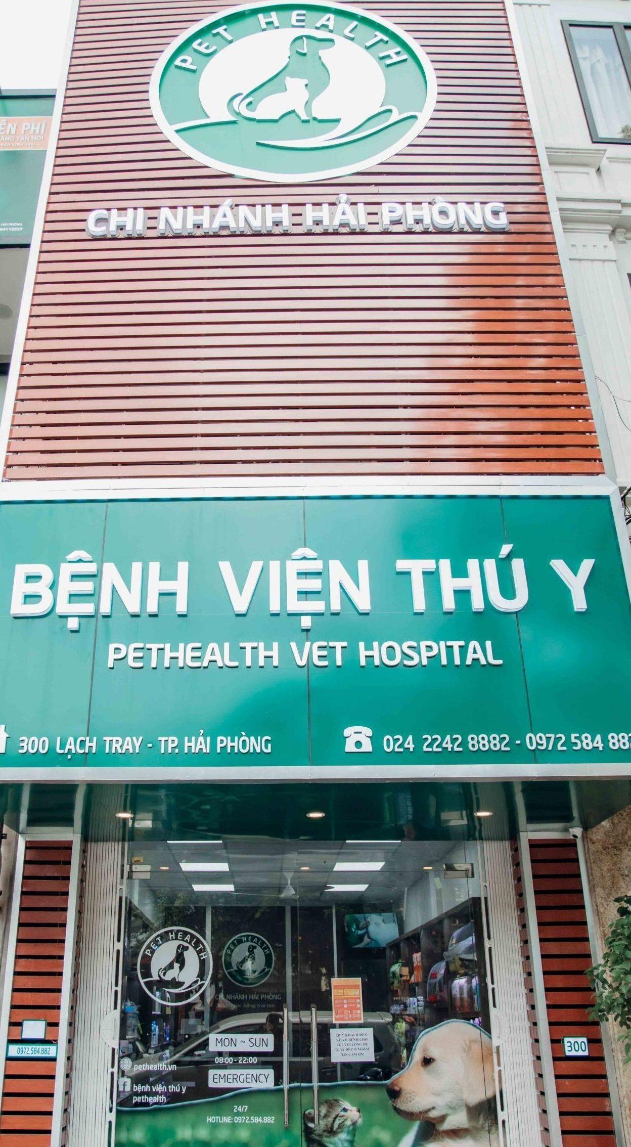 Chụp ảnh bệnh viện thú y PetHealth Hải Phòng
